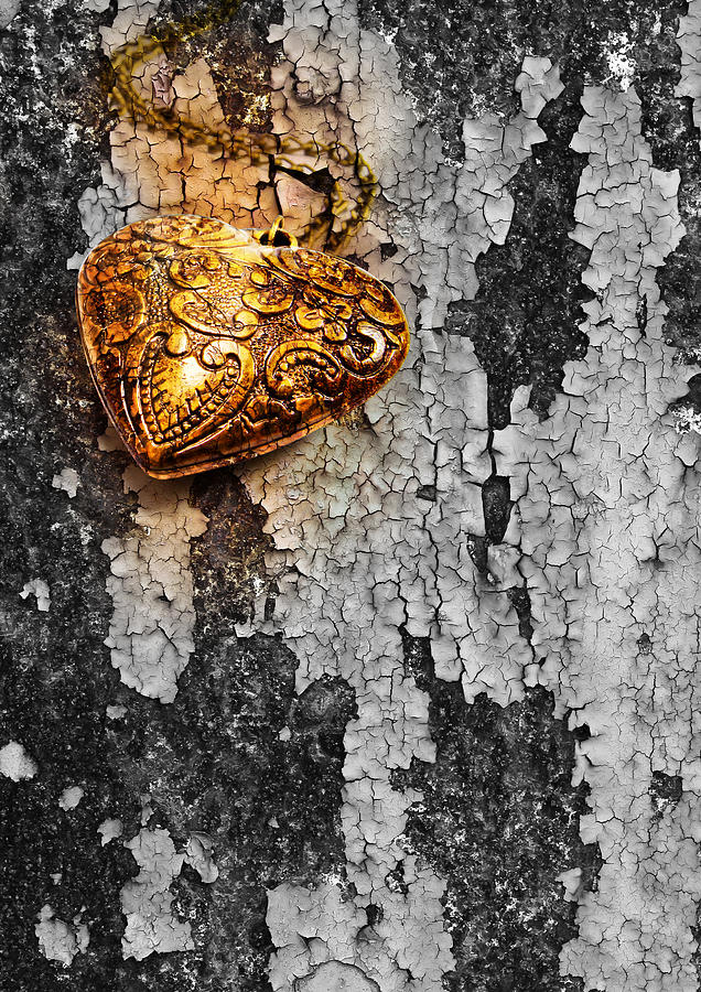 Heart Photograph - Old Heart  by Natee Srisuk