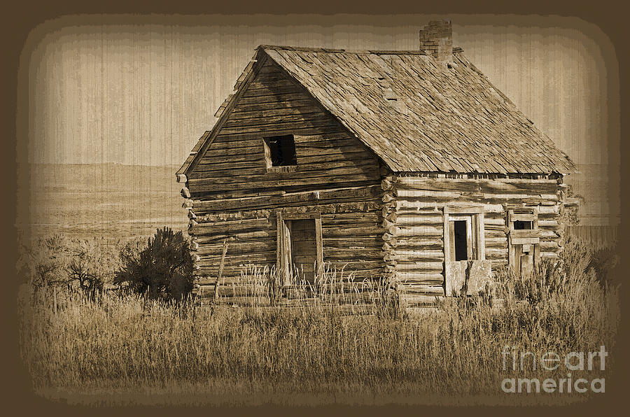 Home Photograph - Old Hunting Cabin - Wyoming by Donna Greene