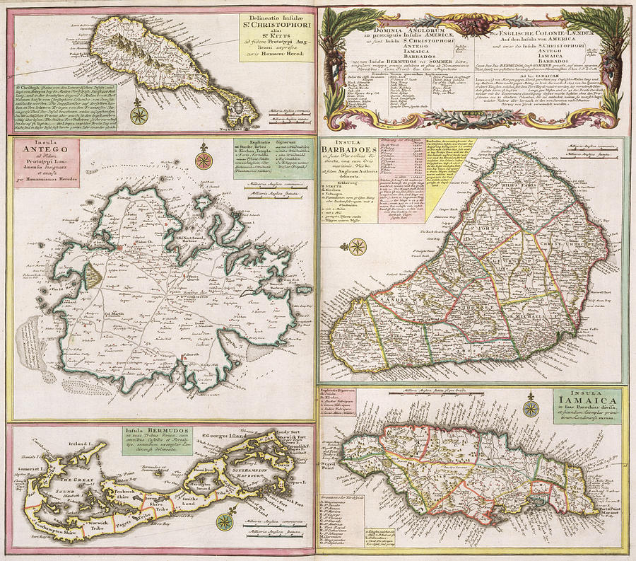 Maps Drawing - Old Map Of English Colonies In The Caribbean by German School