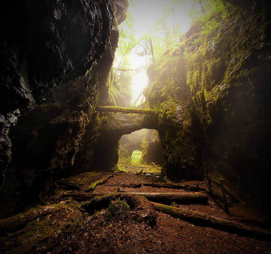Old Mine Photograph by Micael  Carlsson