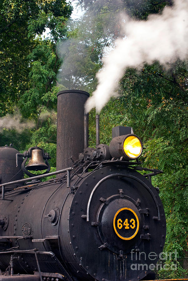 Railroad Photograph - Old Number 643 by Paul W Faust -  Impressions of Light