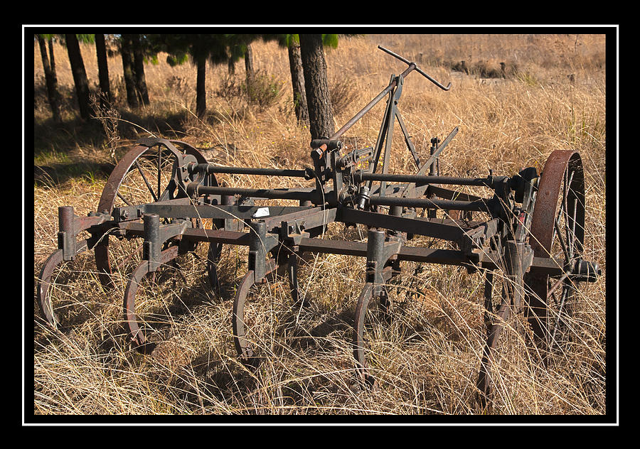 Farm Tools Photograph - Old Plough by Miguel Capelo