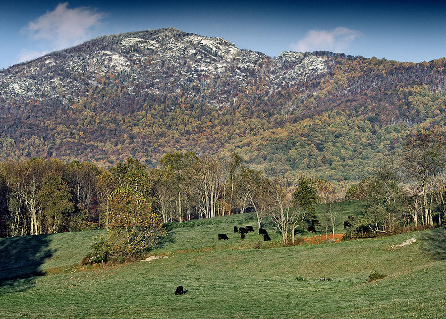 Old Photograph - Old Rag Mountain - Shenandoah National Park - Virginia by Brendan Reals
