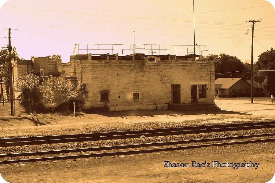 Photograph - Old School? by Sharon Farris