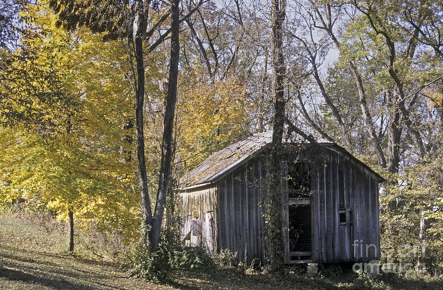 Fall Photograph - Old Shed in Fall by Richard Nickson