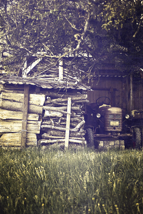 Tree Photograph - Old Shed by Joana Kruse