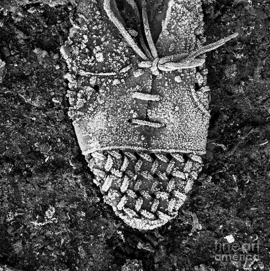 Black And White Photograph - Old Shoe by Bernard Jaubert