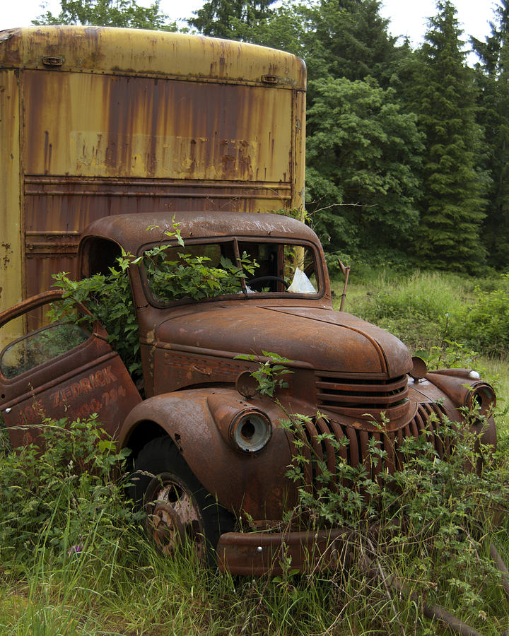 Old Truck Photograph - Old Truck In Rain Forest  by Gary Langley