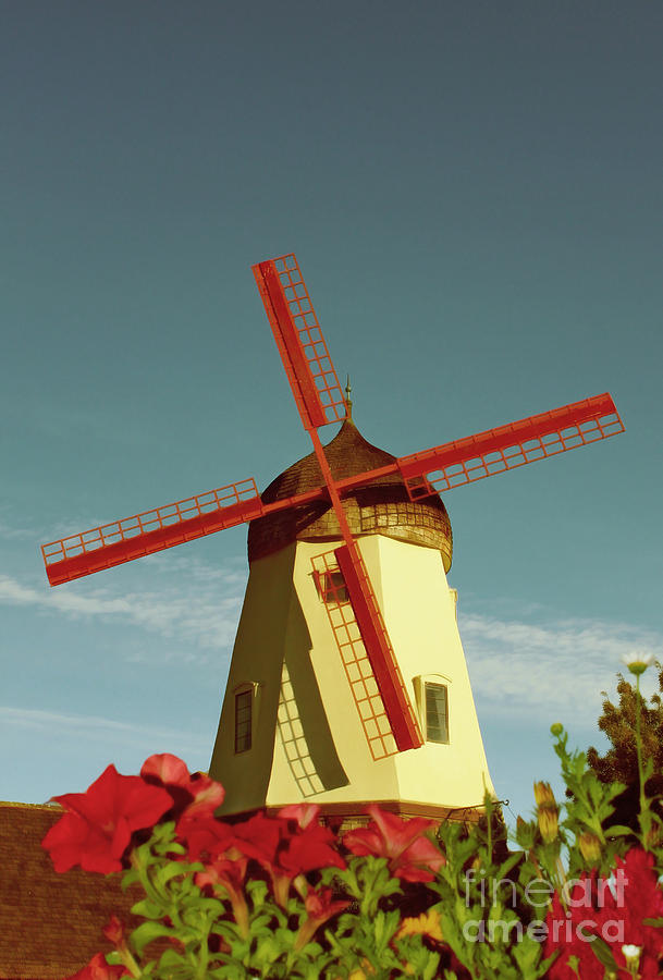 Windmill Photograph - Old Windmill  by Paul Topp
