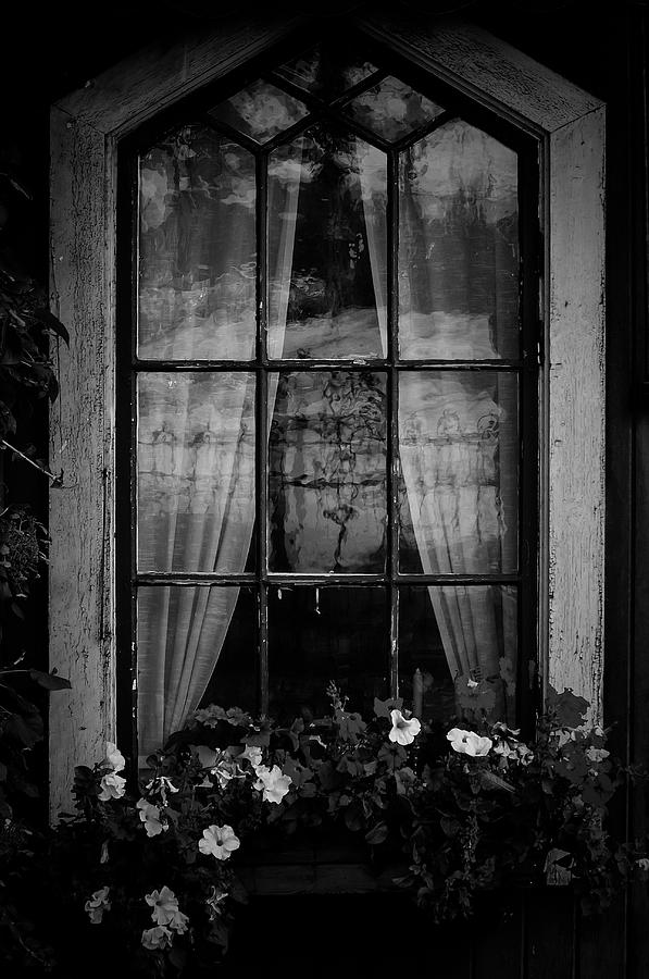 Old Window Photograph by Micael  Carlsson
