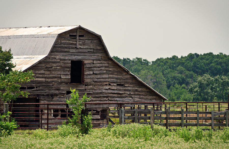 Barns Photograph - Old Wood Barn by Lisa Moore