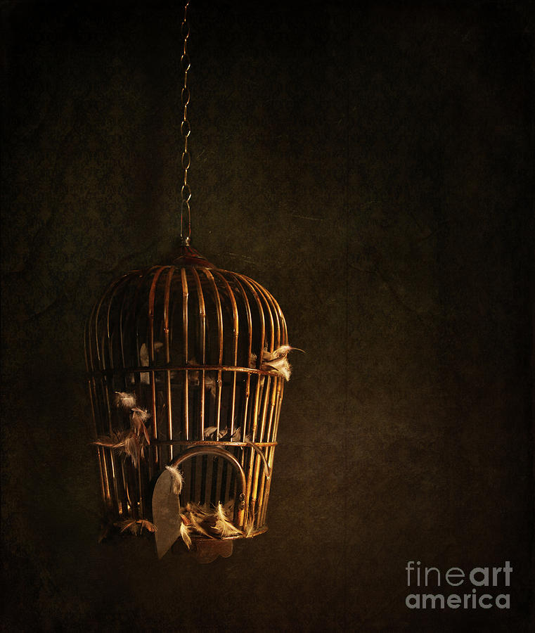 Atmospheric Photograph - Old Wooden Bird Cage With Feathers by Sandra Cunningham