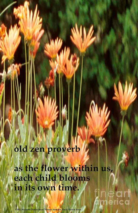 Poem Photograph - Old Zen Proverb by Richard Donin