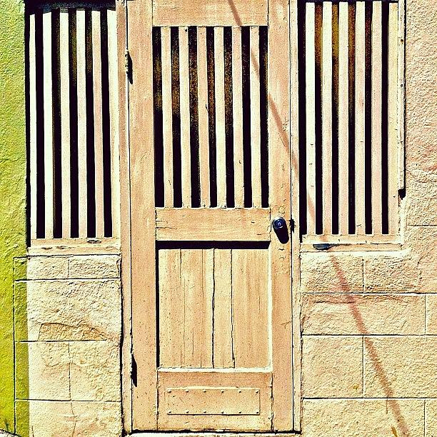 Door Photograph - Olive Green Stripe by Julie Gebhardt