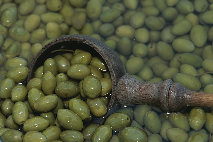 Plants Photograph - Olives Being Processed In Provence by Nicole Duplaix