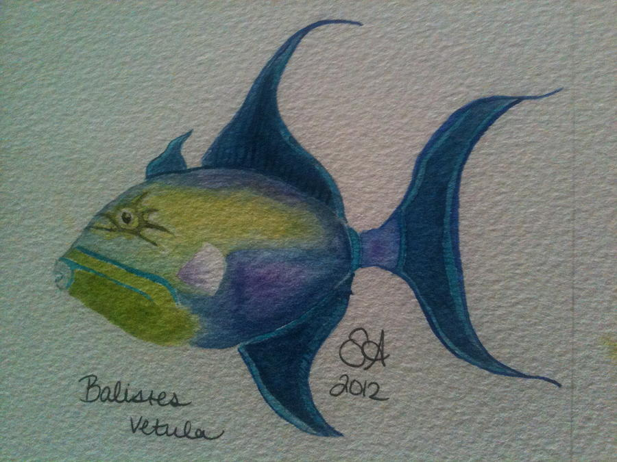 Fish Painting - Olwife by Sara Aubery