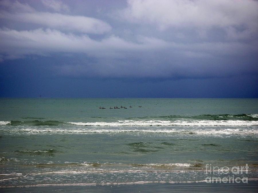 Nature Photograph - On A Stormy Afternoon by Lucyna A M Green