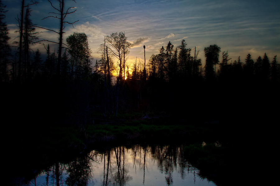 Summer Photograph - On A Summers Night by Gary Smith