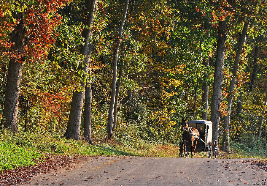 Amish Photograph - On Our Way by Kimberly Little