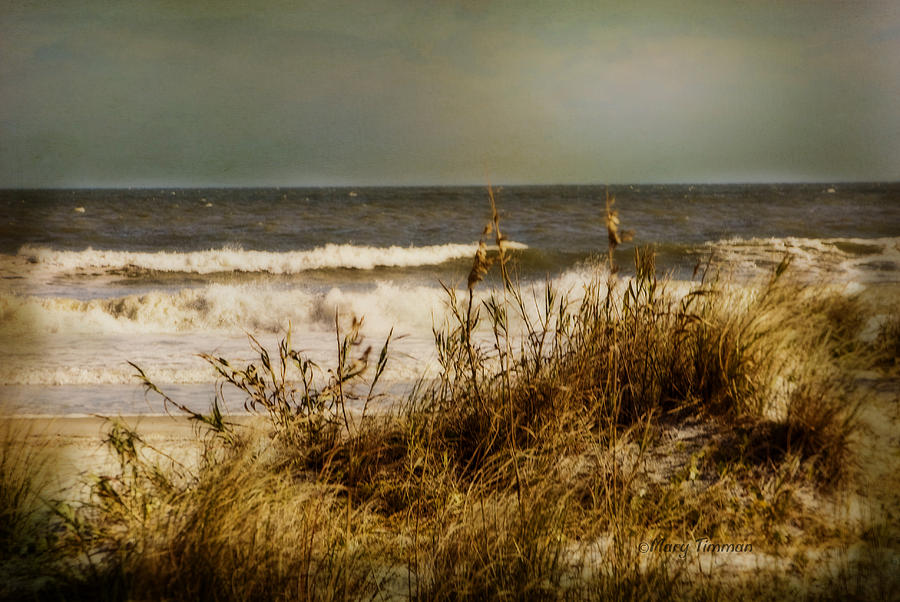 Water Photograph - On The Beach by Mary Timman
