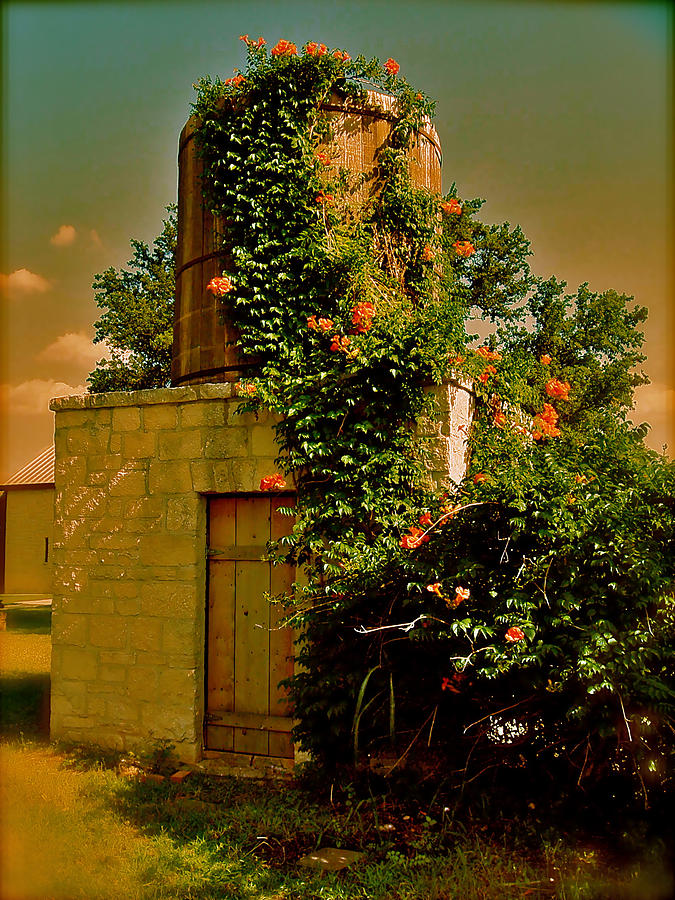 Water Tower Photograph - On The Grounds by Amber Hennessey