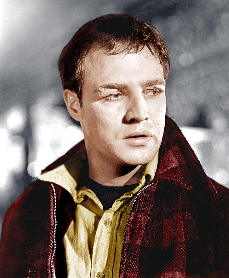 1954 Movies Photograph - On The Waterfront, Marlon Brando, 1954 by Everett