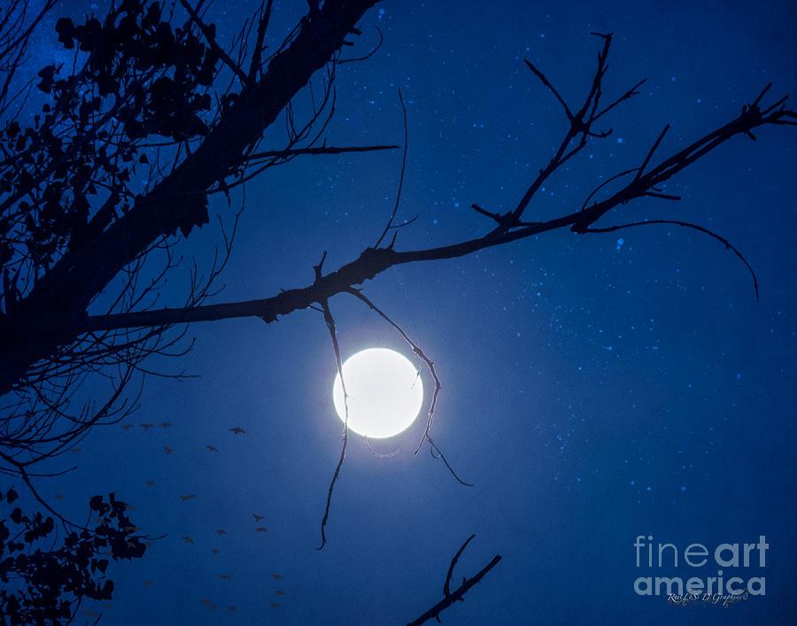 Moon Digital Art - Once In A Blue Moon by Rhonda Strickland