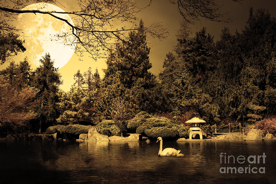 Sepia Photograph - Once Upon A Time Under The Moon Lit Night . Golden Cut . 7d12782 by Wingsdomain Art and Photography