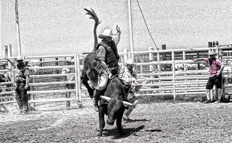 Cowboy Photograph - One Buck At A Time by Rachelle Rice