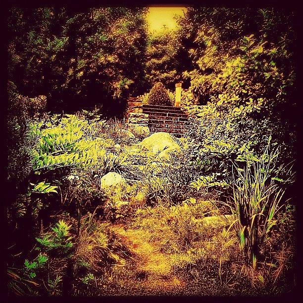 Beautiful Photograph - One Of Many Hidden Stone Stairs On The by Julianna Rivera-Perruccio