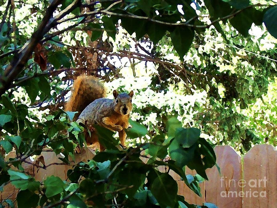 Squirrel Photograph - Oops You Caught Me     Painterly by Donna Parlow