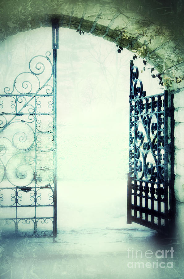 Open Iron Gate In Fog Photograph By Jill Battaglia
