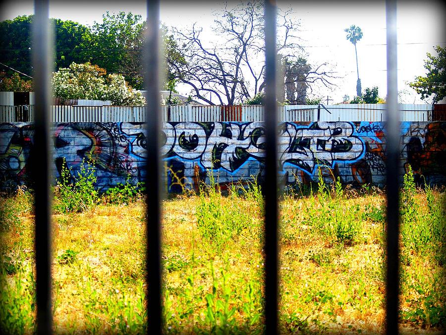 Grafitti Photograph - Options by D Wash