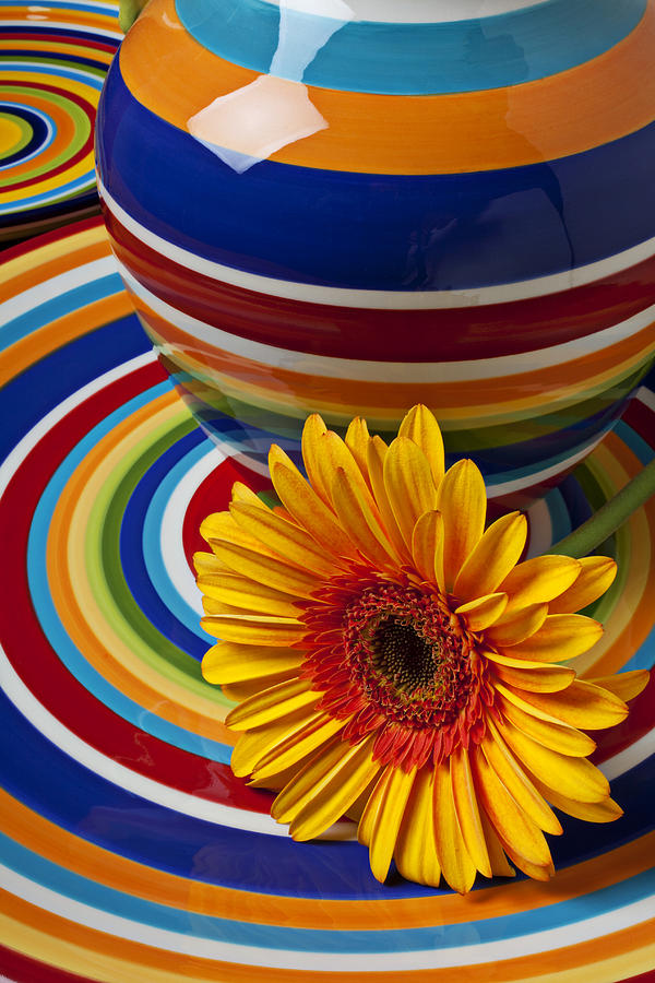 Yellow Photograph - Orange Daisy With Plate And Vase by Garry Gay