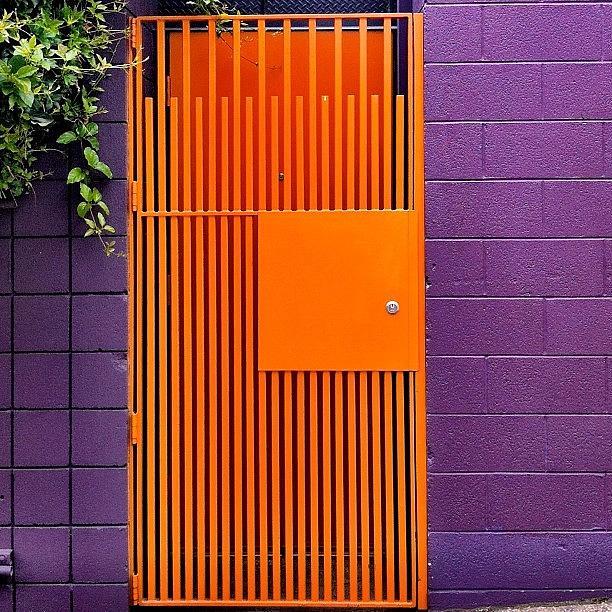 Sanfrancisco Photograph - Orange Gate by Julie Gebhardt