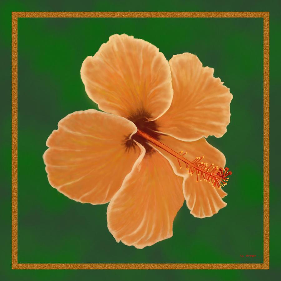 Hibiscus Painting - Orange Hibiscus by Tim Stringer