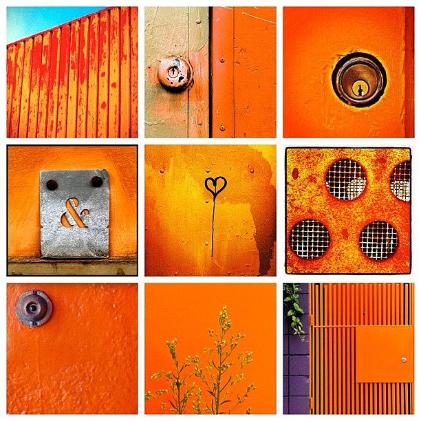 Orange Photograph - Orange  by Julie Gebhardt
