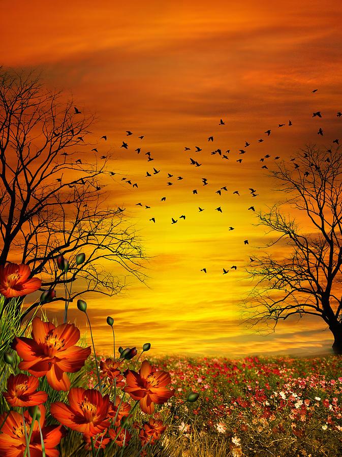 Cosmos Digital Art - Orange Meadow Montage by Julie L Hoddinott
