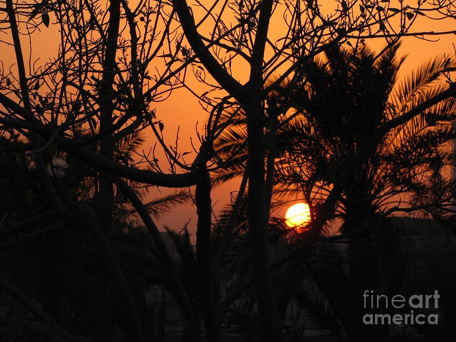 Landscape Photograph - Orange Sky by Will Cardoso