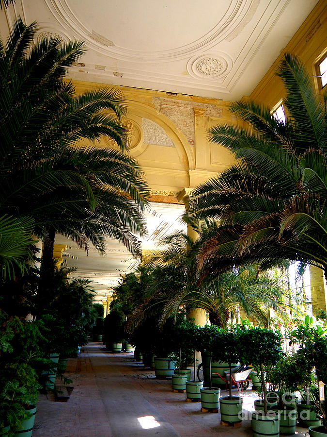 Architecture Photograph - Orangerie Sanssouci by Tanya  Searcy