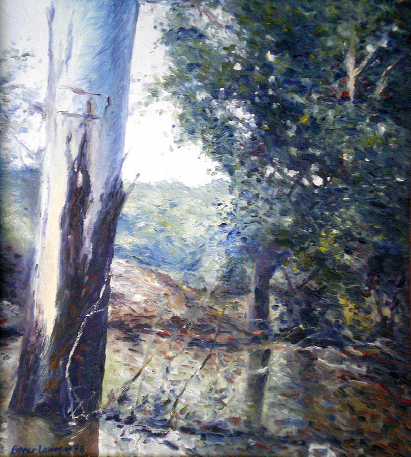 Landscapes Painting - Orara River In Flood Nsw Australia 1998 by Enver Larney