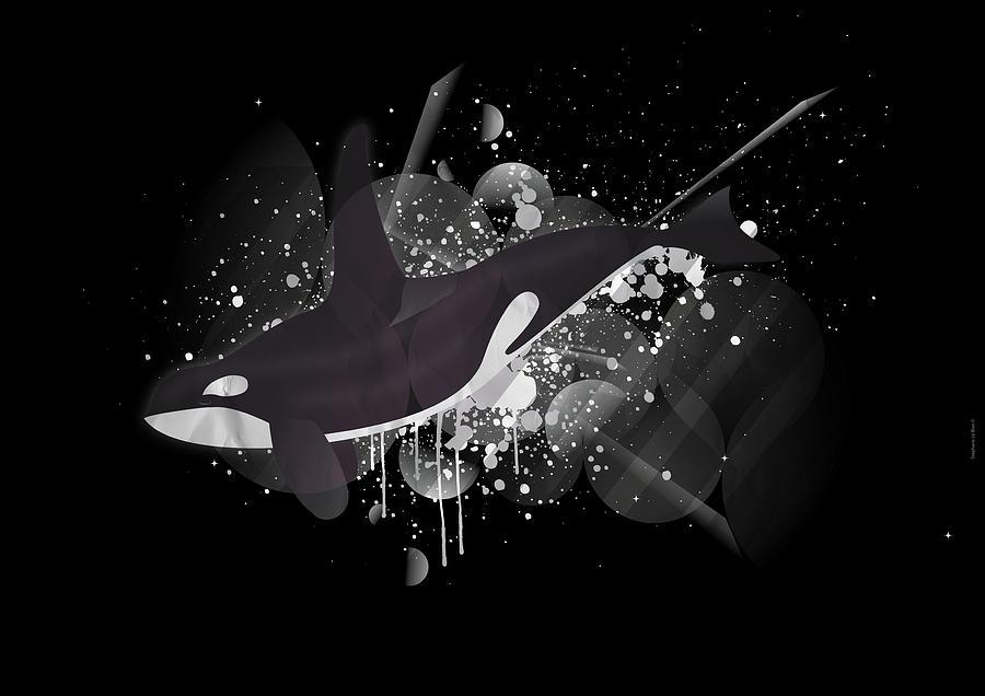 Orcinus Digital Art - Orca by Stephane Le Blan