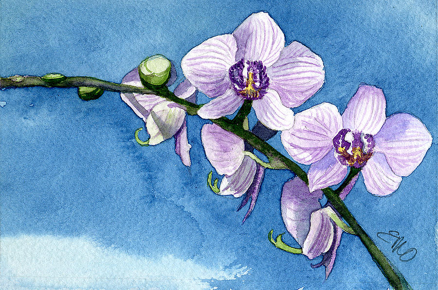 Flower Painting - Orchid by Eunice Olson