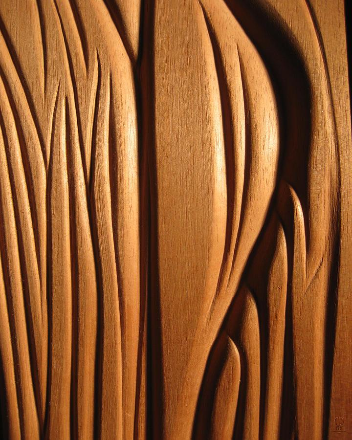 Organic Sculpture - Organic Mahogany Shapes by Charles Dancik