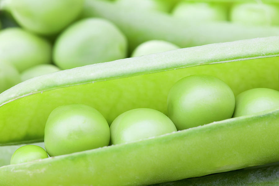 Horizontal Photograph - Organic Peas by Andrew Dernie