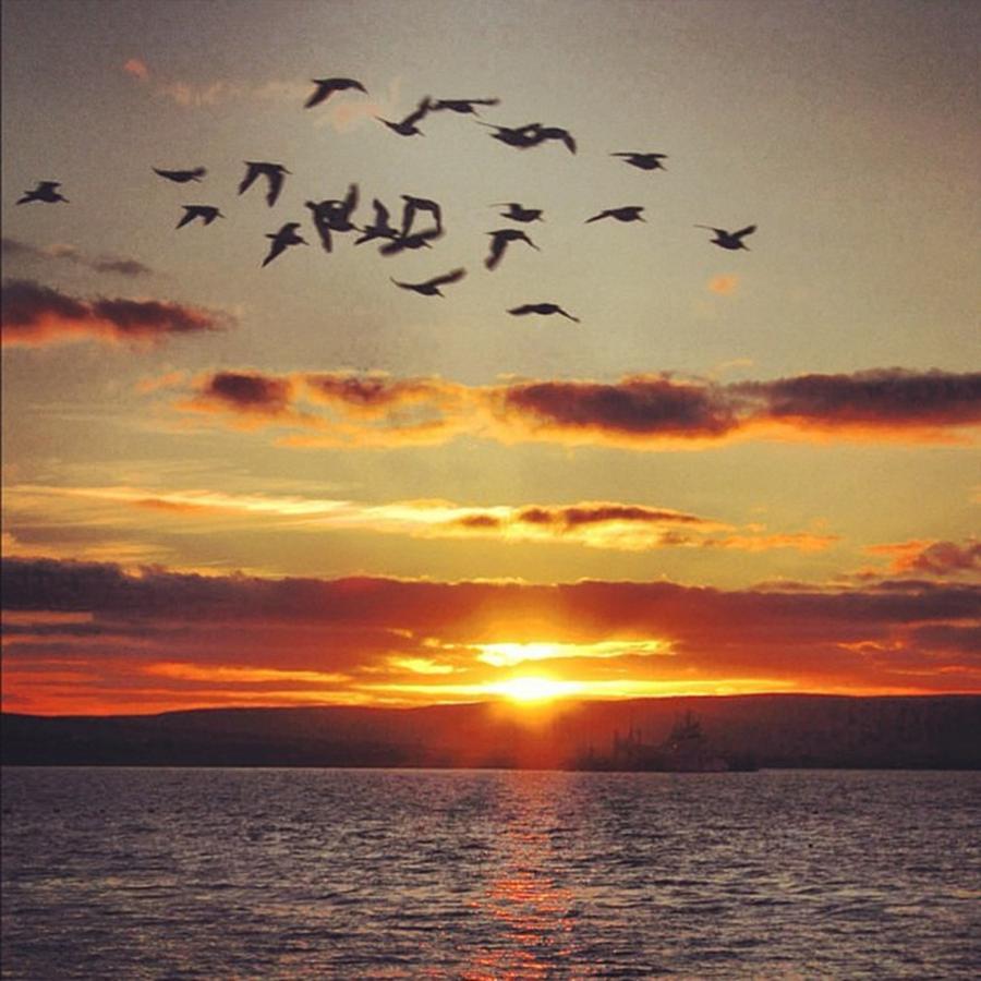 Sunset Photograph - Orkkneys sunset by Luisa Azzolini