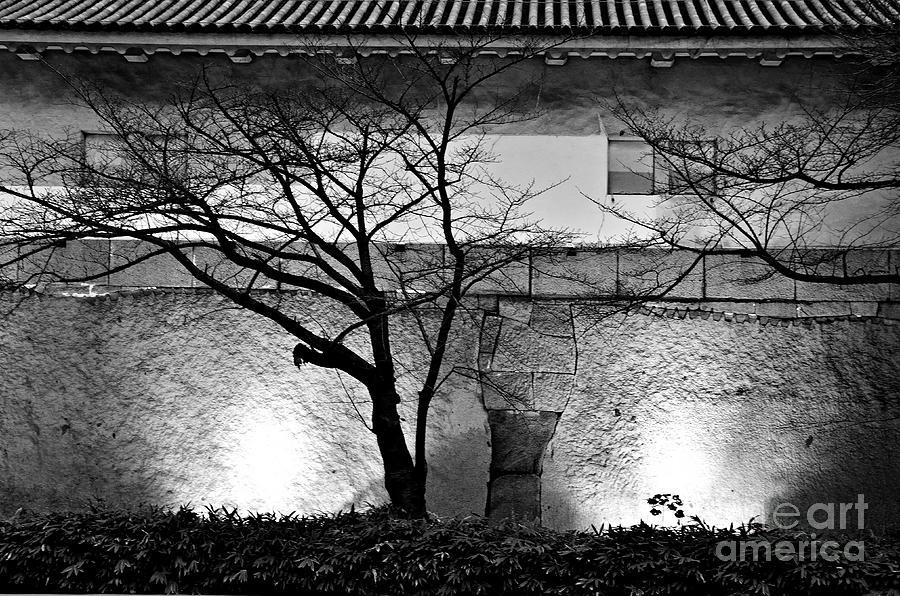 Castle Photograph - Osaka Castle Wall by Dean Harte