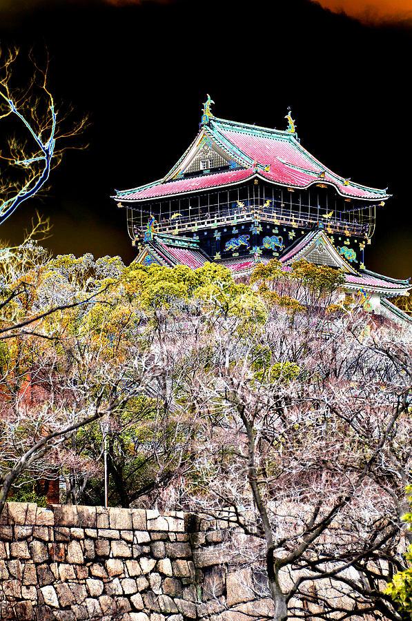 Castle Photograph - Osaka Temple by Allan Rothman