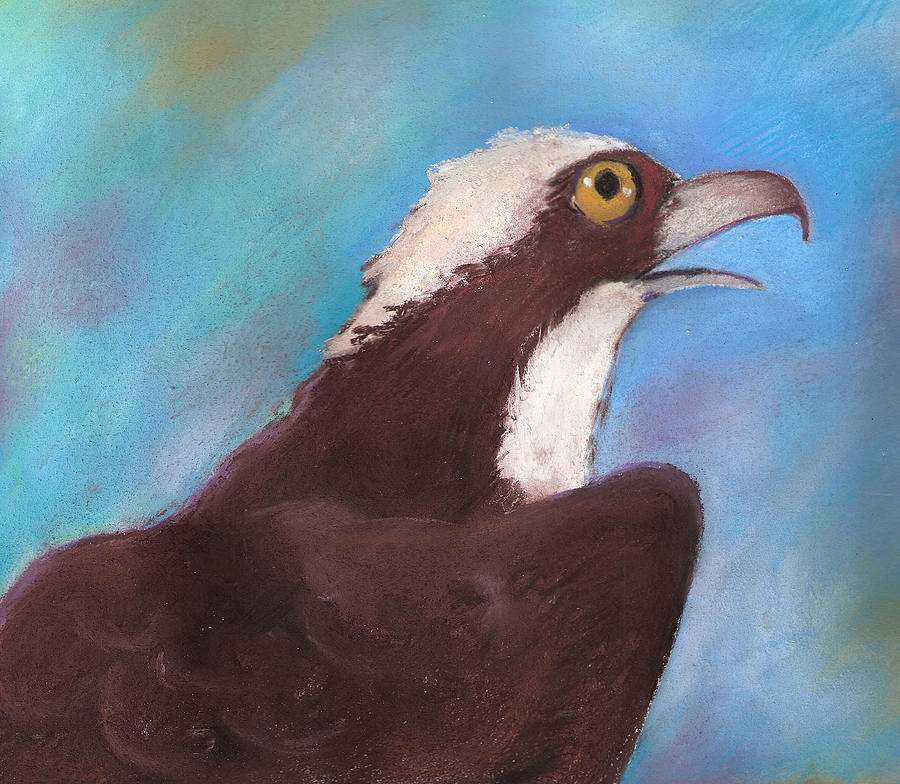 Osprey Painting - Osprey by Susan Herbst