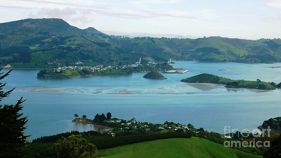 Bay Photograph - Otago Harbour by Therese Alcorn
